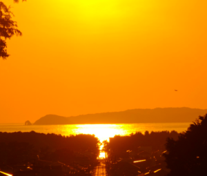 宮地嶽神社「光の道」の写真
