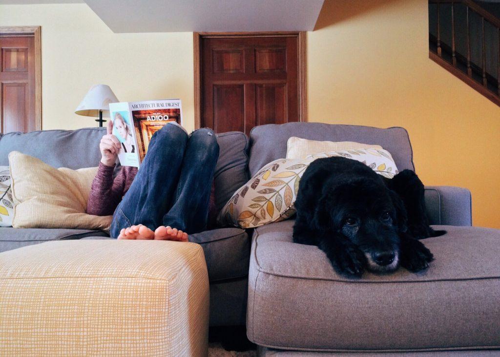 家でリラックスしている写真